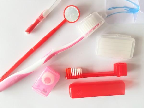 Traveller Hygiene Tasche